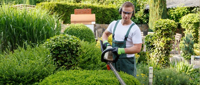 Jardinier nivelles braine l alleud genappe les bons for Jardinier professionnel